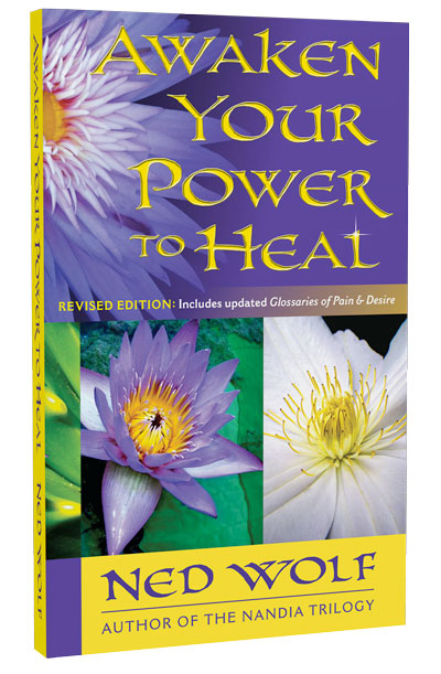 Awaken Your Power to Heal. 3D image of book front cover featuring 3 flowers and puple background with gold title font.